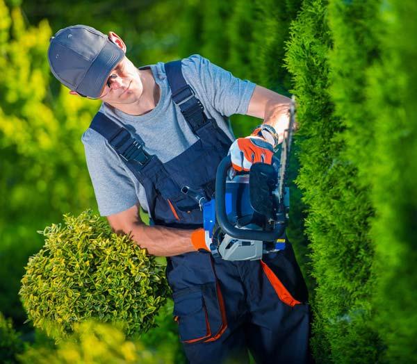 jardiniers SERADO service à domicile